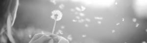 kvinna som håller i en blomma